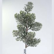 FROSTED JAPANESE CEDAR (GREEN)  (CM. 35)